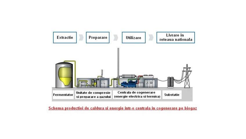 schema productie de caldura si energie intr-o centrala in cogenerare pe biogaz