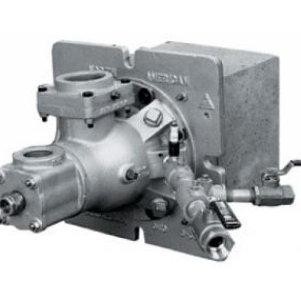 Arzator industrial gaz model TEMPEST 4411